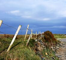 Island Fence by Stevie Toye