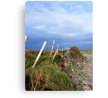 Island Fence Metal Print