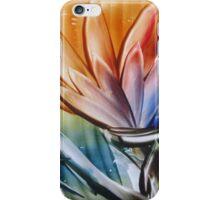 Brightness blossoming iPhone Case/Skin
