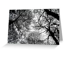 treetops 3 Greeting Card