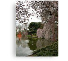Japanese Garden in Cherry Blossom Season Canvas Print