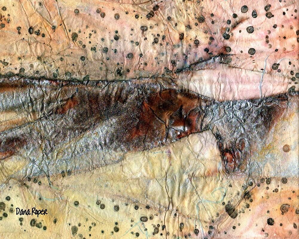 Sedimentary Rock by Dana Roper