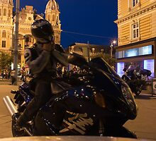 Night Rider by sanyi