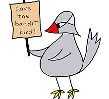 save the bandit bird by Soxy Fleming