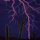 Desert Lightning by Tony Sturtevant