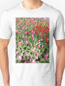 Garden of Multicolor Tulips 2 T-Shirt