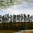 The Sky Below by BlaizerB