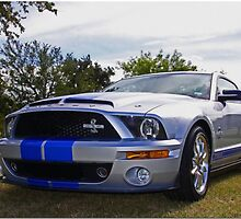 Super Snake by Chet  King
