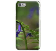 Bluebells, ferns and ladybird iPhone Case/Skin