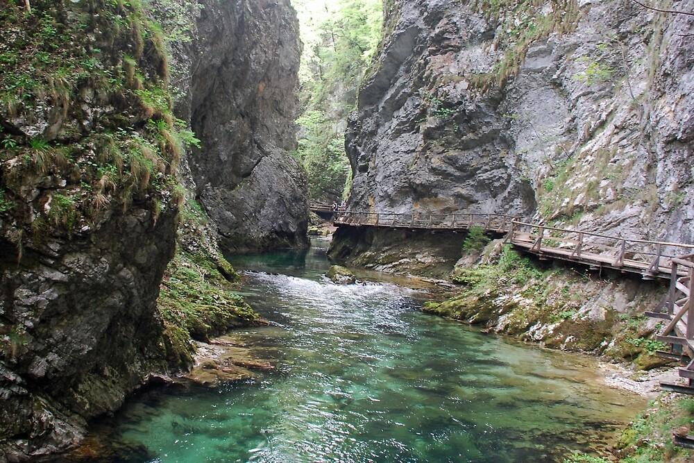 A walk in the Vintgar gorge - Slovenia by Arie Koene