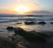 St Andrews Beach - Sunset by Michael Tuni