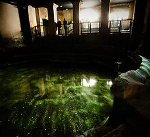 Plunge Pool, Roman Baths by dendritic