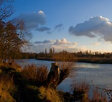 Golden Afternoon, Desborough Island by Rachael Talibart