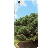 tree landscapes as natures paintbrush 6 iPhone Case/Skin