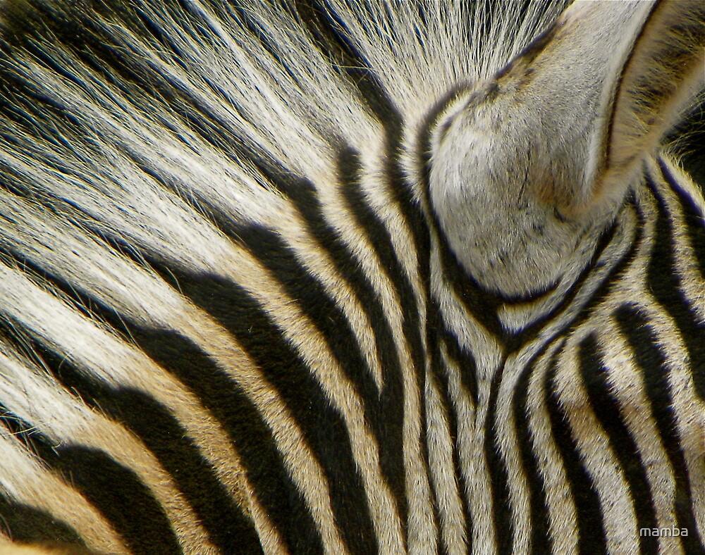 Stripes by mamba