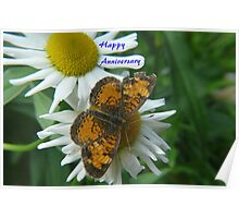 Daisy and Butterfly ..Anniversary Card Poster