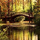 Crim Dell Bridge 2 by Timothy Gass