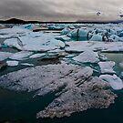 Iceland - Icebergs by Patrycja Makowska