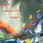 A Million Little Pieces by jerry2
