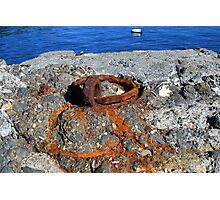 Rusty Trace Photographic Print