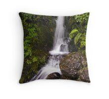 Jock Atkins Waterfall Throw Pillow
