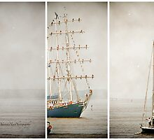 Sail Boat Tryptich by Yannik Hay