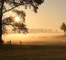 Dutch foggy sunrise in rural landscape by DikHendriks