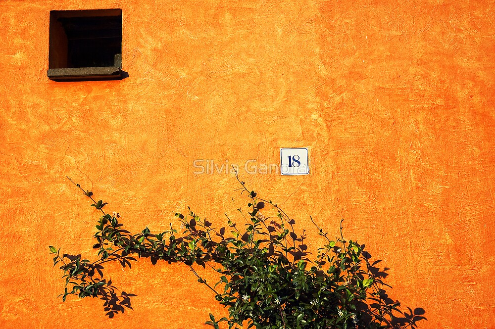 18 on an orange wall by Silvia Ganora
