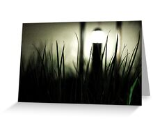 Night and Light Greeting Card