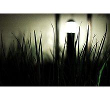 Night and Light Photographic Print