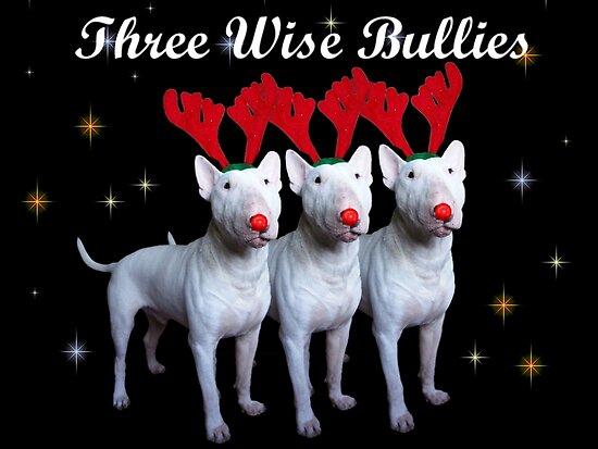 Three Wise Bullies by Louise Morris