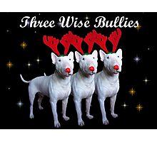 Three Wise Bullies Photographic Print