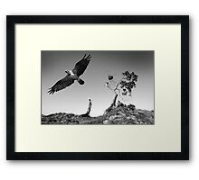 "'Home Alone""-Angourie Point NSW Framed Print"