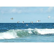 seagulls over wave Photographic Print