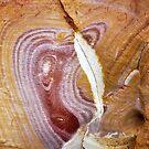 Nature as Artist - Dripstone Cliffs, Darwin by chijude