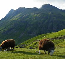 The Lake District: Lawn Mowers at Work by Rob Parsons