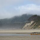 Beverly Beach, Oregon by AuntieBarbie