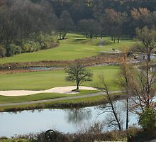 Golf Anyone? by Lynn  Gibbons