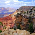 Grand Canyon Beauty by Irvin Le Blanc