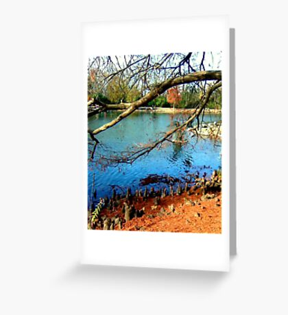 A place I go for peace.. Greeting Card