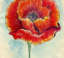 Poppy Flower Watercolor by AnnArtshock