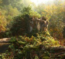 Autumn Paradise by Graham Ettridge