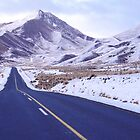 Lindis Pass by Paul Mercer