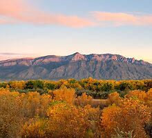 The Sandias and the Rio Grande Bosque II by Mitchell Tillison