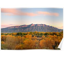 The Sandias and the Rio Grande Bosque II Poster