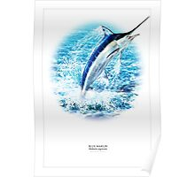 BLUE MARLIN POSTER 2 Poster