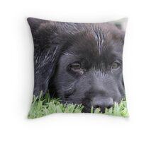 Sleepy 'Butch' Throw Pillow