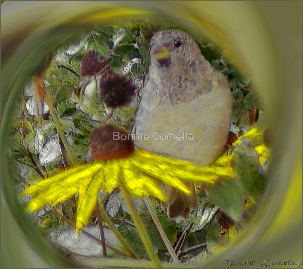Springtime in April by Bonnie Comella