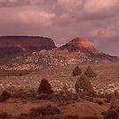 Utah Landscape. by Finbarr Reilly