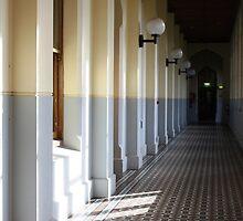 light in the hallowed halls by Karen E Camilleri